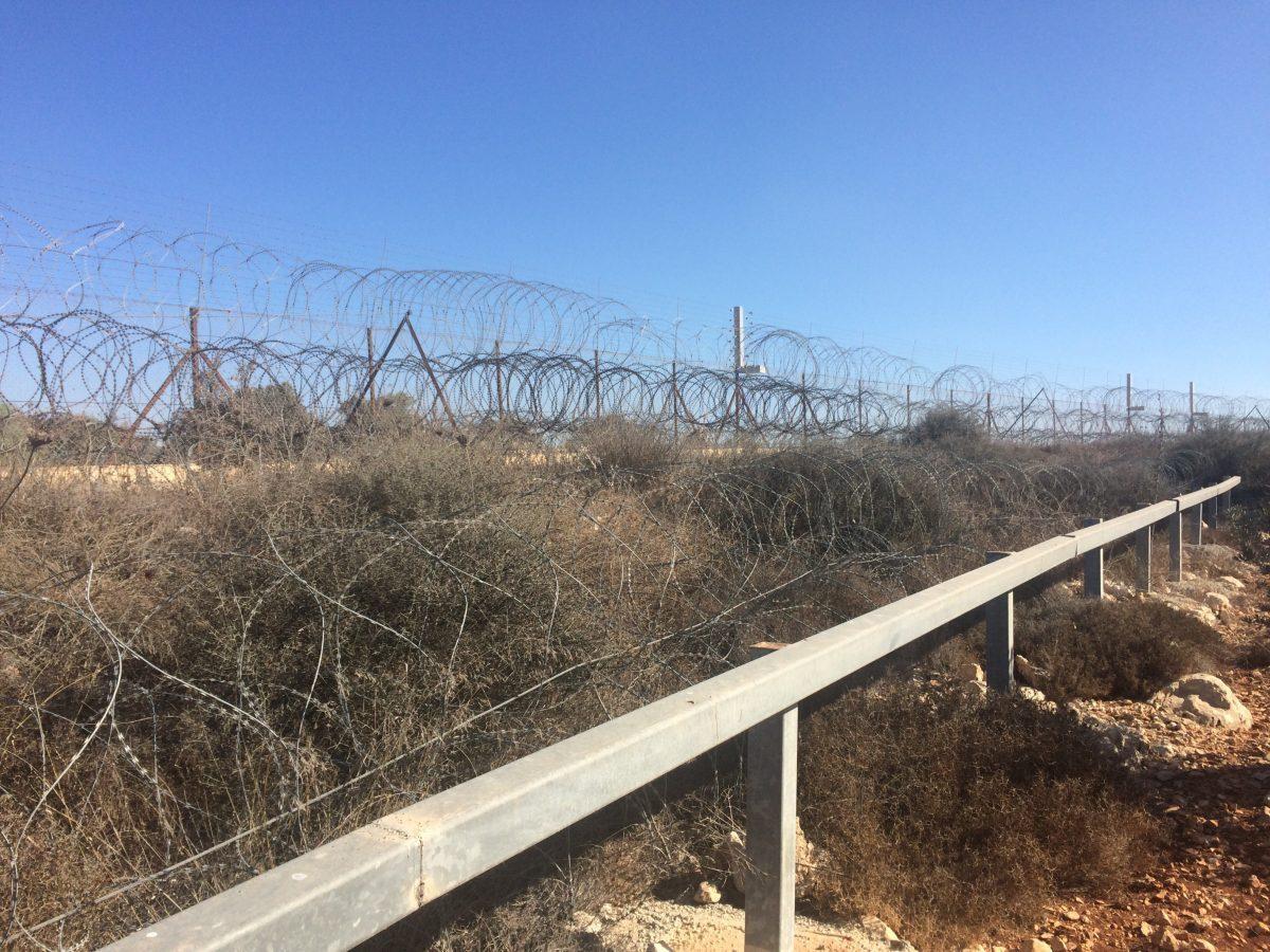 Mardi 16 octobre 2018 - Cueillette des olives à Salfit près de la colonie d'Ariel