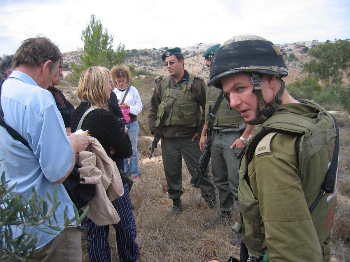La dix-septième campagne de cueillette des olives en Palestine occupée, organisée par le Comité Rennais de l'AFPS, va commencer !