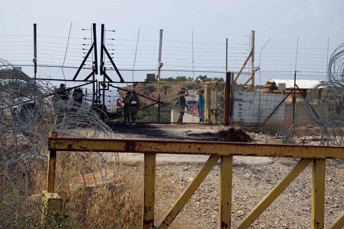 18ème campagne de cueillette des olives en Palestine occupée - Farkha, 23 Octobre